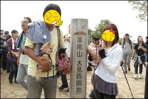 2011109-13.jpg
