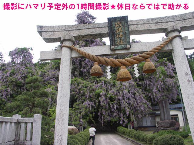 礒部神社 (3)
