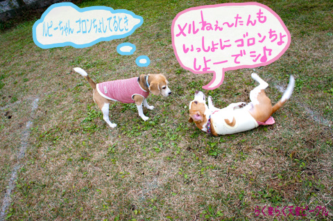 2R&メルちゃんDSC03115