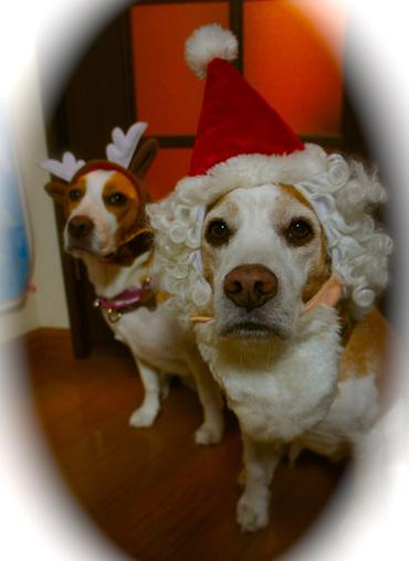 B&RメリークリスマスDSC00764
