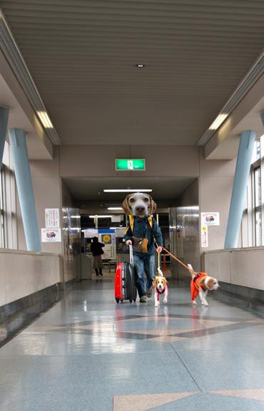 空港渡り廊下DSC00566