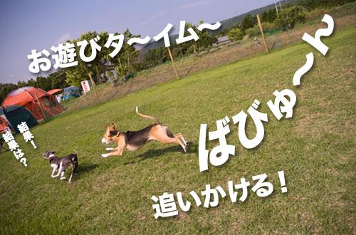 100615_01.jpg