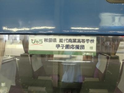 583系秋田車(側面)