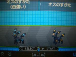 001_convert_20101019215720.jpg