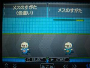 001_convert_20101024194812.jpg
