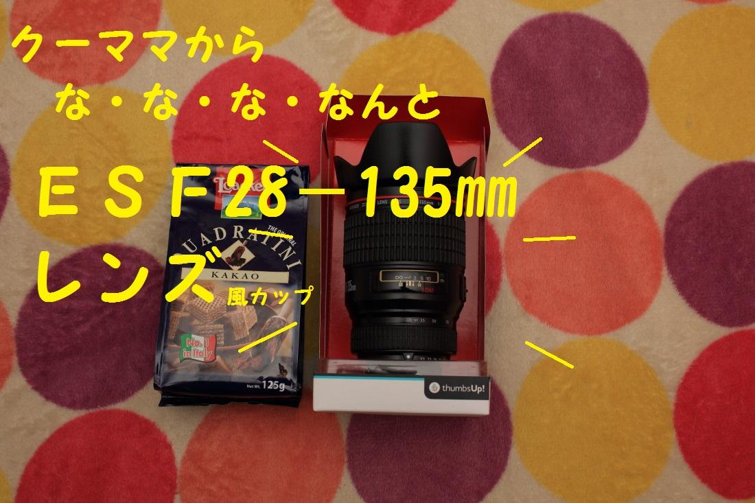 DPP_0016_20130130194552.jpg