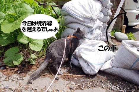 2011053108.jpg