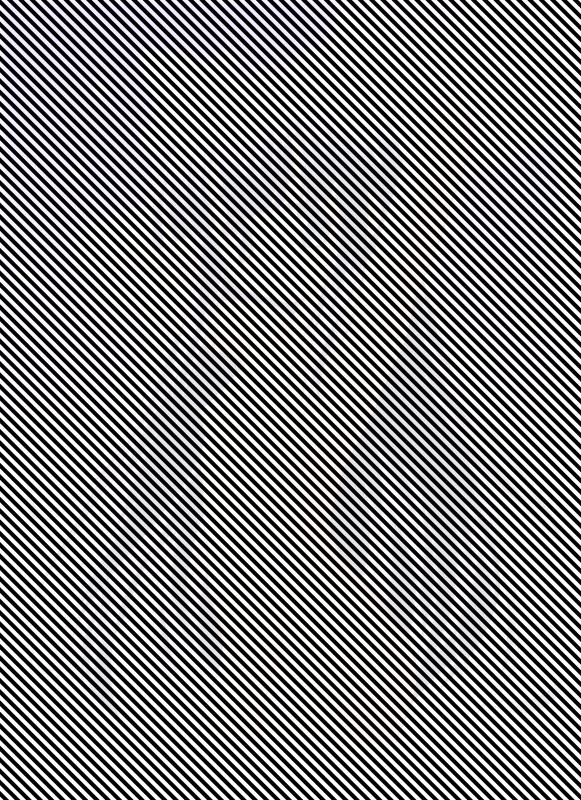 目の悪い人にしか見えない画像