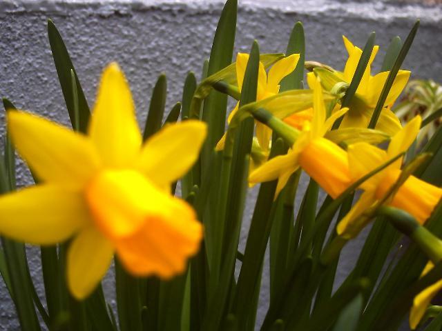 2012春1