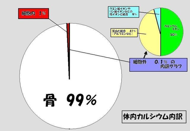 体内カルシウム内訳グラフ