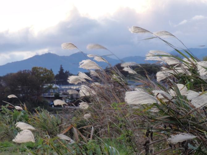 夕景2011120
