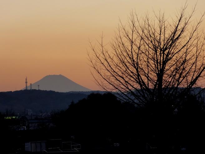 入間川サイクリング道広瀬橋~豊水橋中間点からの富士