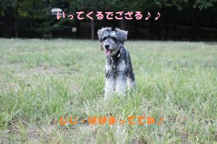 DSC00697.jpg