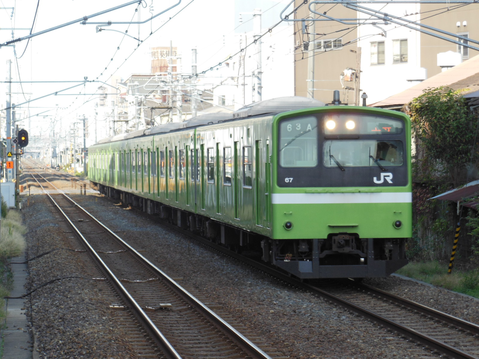DSCN5298.jpg