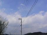 P3200278.jpg