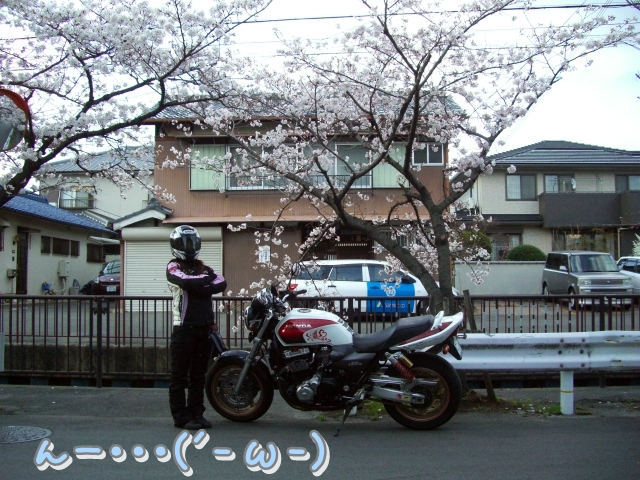 12040715CIMG7504.jpg