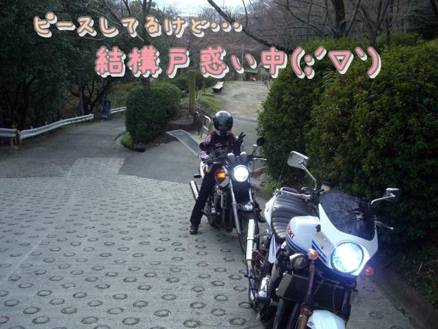 12040716CIMG7509.jpg