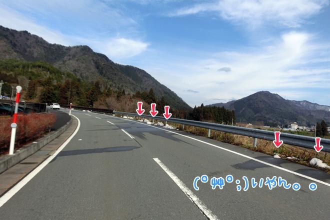 CIMG1198.jpg