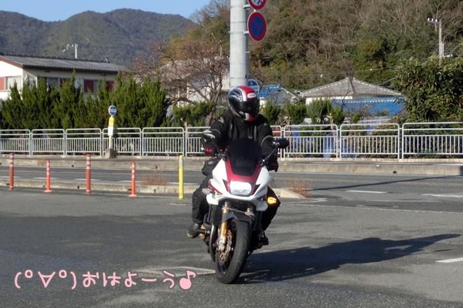 CIMG1300.jpg