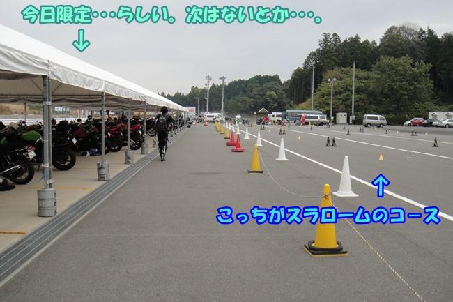 DSC02375.jpg