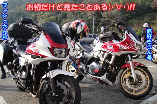 DSC02698.jpg