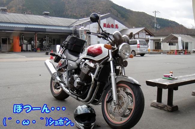 DSC02773.jpg