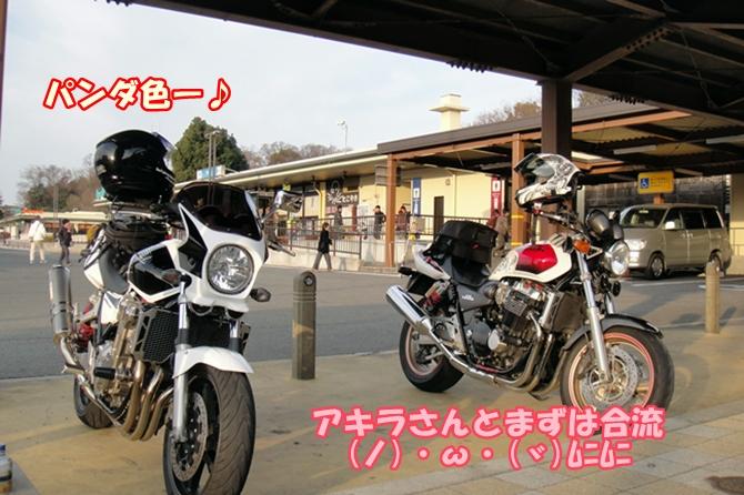 DSC03060.jpg