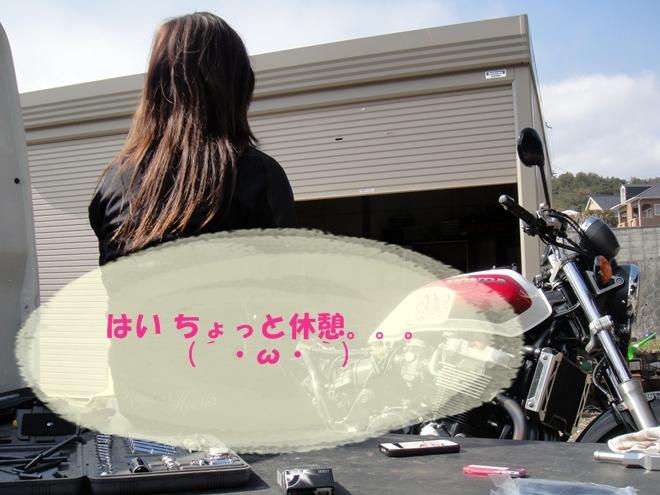 DSC03941.jpg