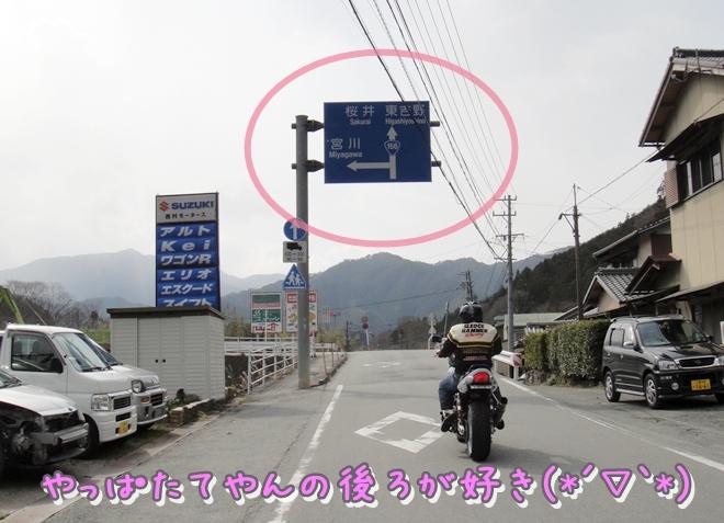 DSC04175.jpg