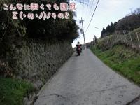 DSC04316.jpg