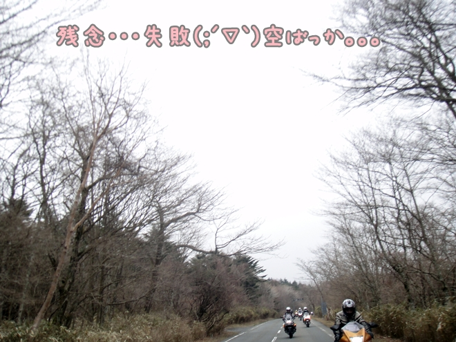 DSC04516.jpg
