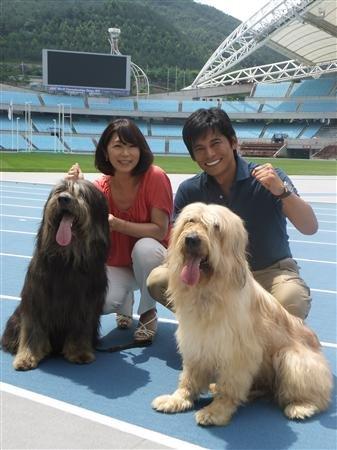 世界陸上サプサル犬