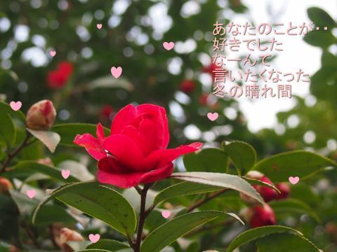 縺ゅ☆繧上d縺セ+056_convert_20130214141239