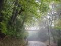 雨のさんぽ 025