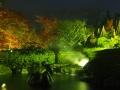 雨の夜景 053