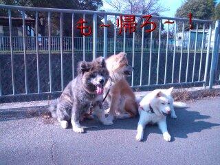 Nov_17_2011_803.jpg