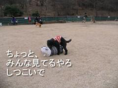 IMG_0098-1.jpg