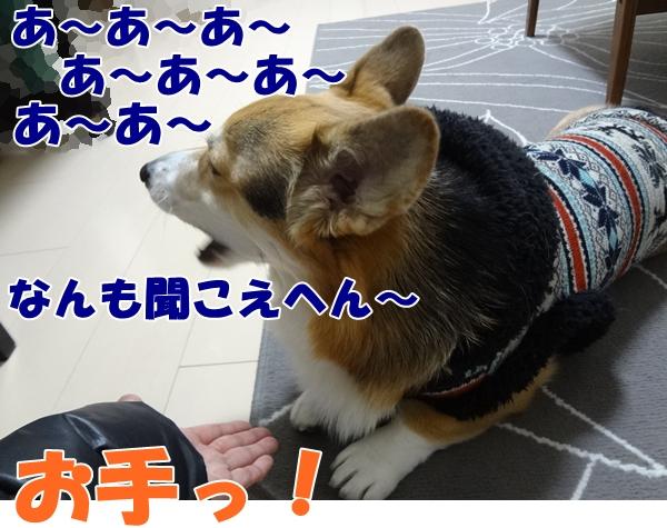 2_20130131173627.jpg