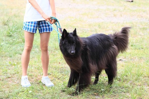2011_08_18 西湖 ブログ用DPP_0092