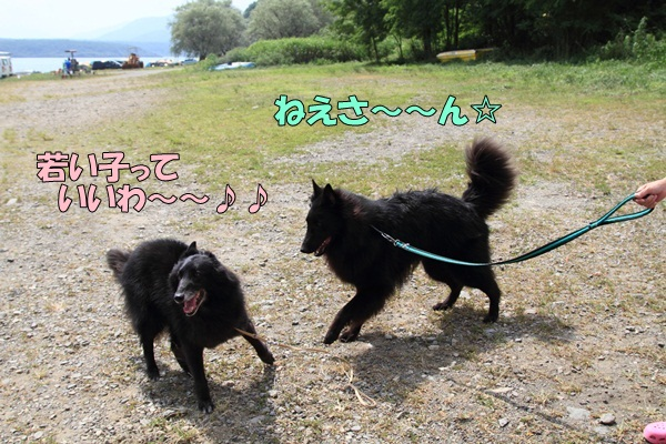 2011_08_18 西湖 ブログ用DPP_0119