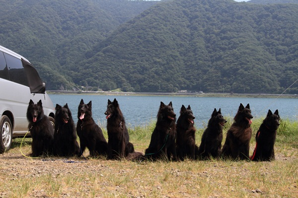 2011_08_18 西湖 ブログ用DPP_0098