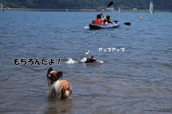 2011_08_18 西湖 ブログ用DPP_0218