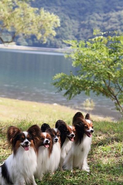 2011_09_14 西湖で水遊び ブログ用2011_09_14 西湖で水遊びDPP_0358