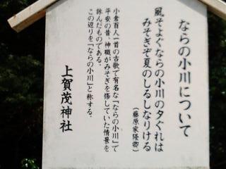 20100911130310.jpg