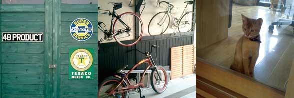 catcycle.jpg
