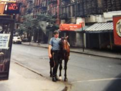 NY騎馬警官縮小1