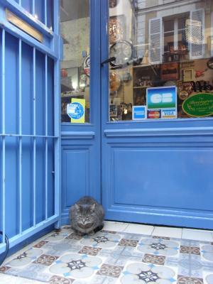 パリのニャンコ縮小