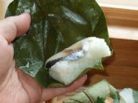 8/8 昼食 ゐざさ寿司セットの柿の葉寿司 鯖