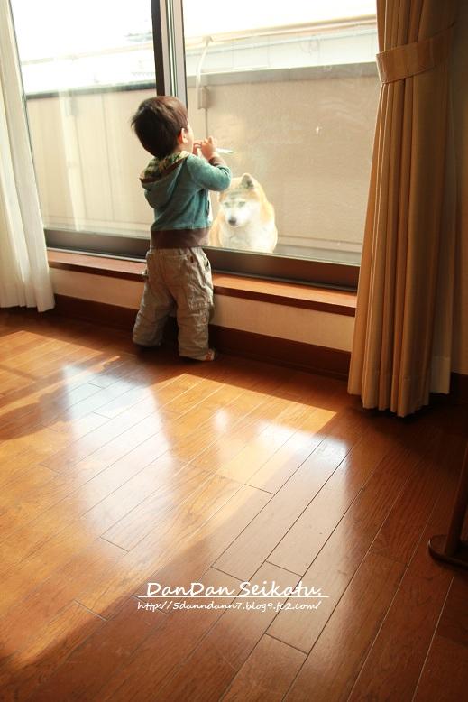 blog_3831.jpg