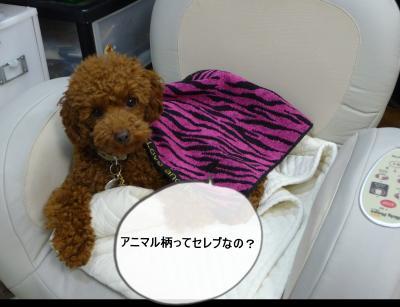 縺ゅ↓縺セ繧祇convert_20130127120725